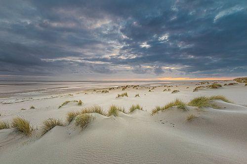 Landschap kust