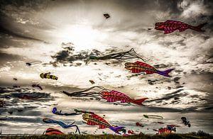 Drachenfest Fehmarn