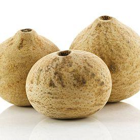 Bellani ball naturel sur Tanja van Beuningen