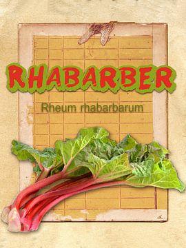 Küchenbild Rhabarber von Dirk H. Wendt