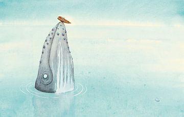 Une baleine à bosse sur Marieke Nelissen