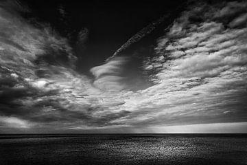 Breaking Light von Rene van Rijswijk