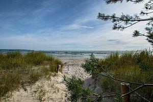 Accès à la plage de Prora, île de Rügen sur GH Foto & Artdesign