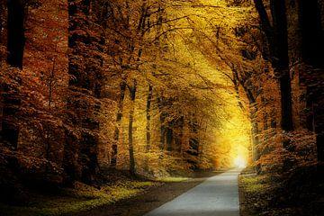 The Healing Path von Kees van Dongen