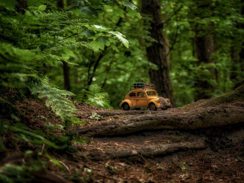Riesenwälder 2 von Kirsten Scholten