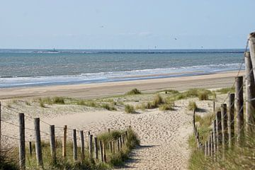 Strandopgang Bloemendaal aan Zee van Femke Looman