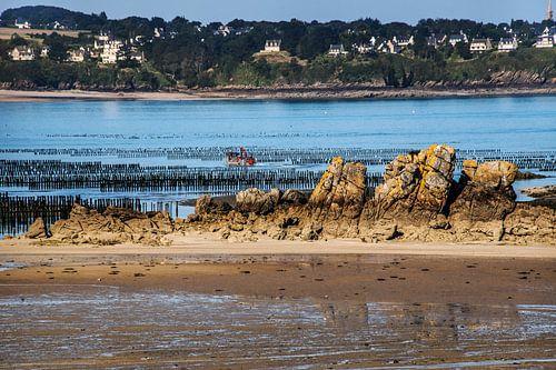 Mosselbanken van Saint Jacut, Bretagne bij eb