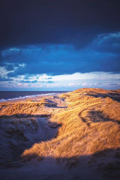 Ombres et lumières dans les dunes danoises sur Florian Kunde