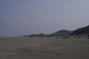 Stand en duinen van Ad Steenbergen