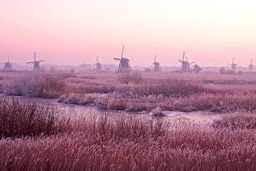 Middeleeuwse molens bij Kinderdijk in Nederland bij zonsondergang van