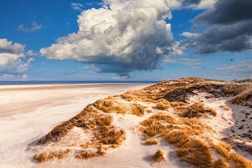 Blick zum Meer von Angela Dölling