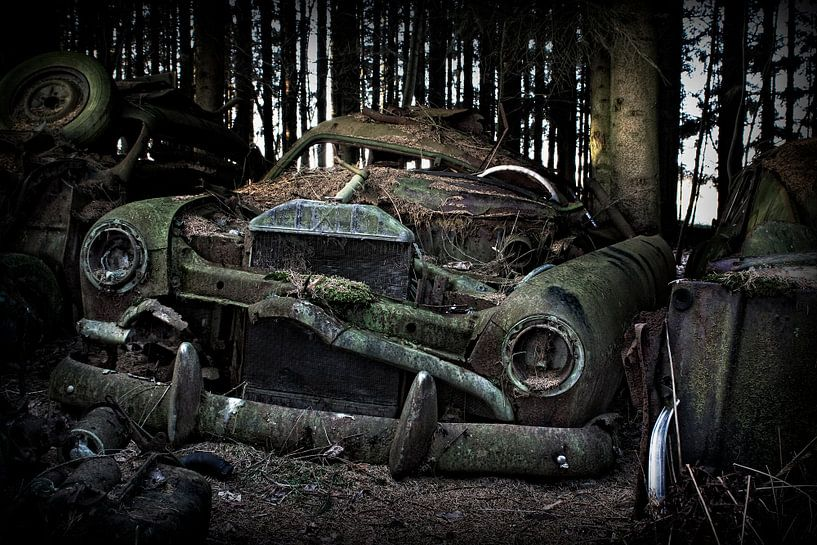 Verlaten auto's van Eus Driessen