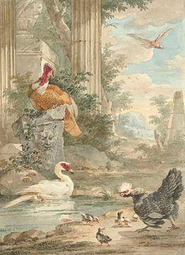 Türkei und andere Vögel in der Nähe von klassischen Ruinen in einem Park, Aert Schouman