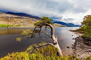 Loch Maree in den Highlands von Schottland von Werner Dieterich