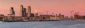 Panorama maashaven Rotterdam van Ilya Korzelius