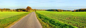 Autumnal Brightness van Gisela Scheffbuch