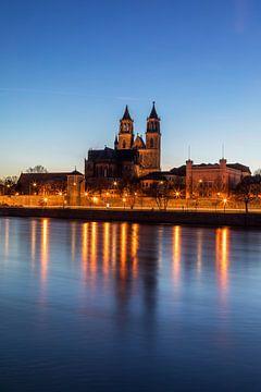 Magdeburger Dom zur blauen Stunde von Frank Herrmann