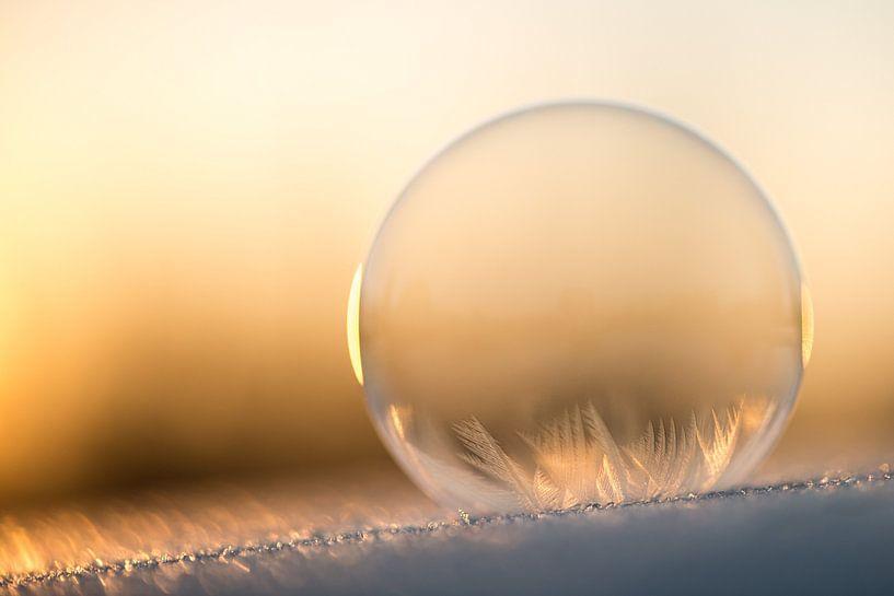 IJskoude bubbel van Gerry van Roosmalen
