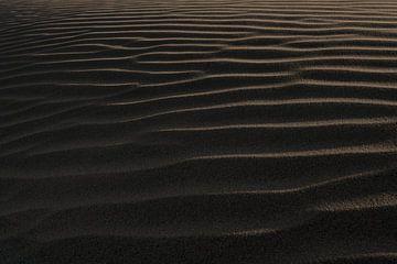 Paracas van Luc Buthker