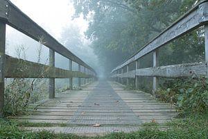 De mist in van
