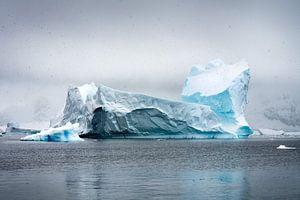 Antarctica 4 van