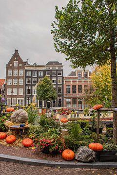Amsterdamer Grachten im Herbst von Bianca Kramer