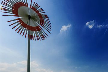 Windmolen bloem