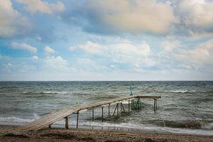 Steiger - Beach Life