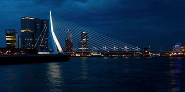 Erasmus brug van Eelke Cooiman