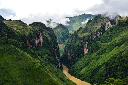 Sterke groene tinten in de bergen van Ha Giang van