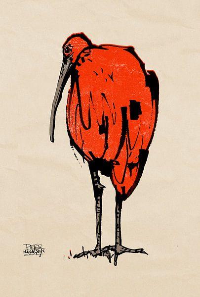 Ibis van Pieter Hogenbirk