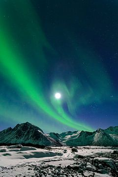 Aurora Northern Polar lumière dans le ciel nocturne au nord de la Norvège sur Sjoerd van der Wal