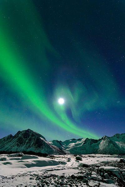 Noorderlicht boven de bergen van Senja in Noord-Noorwegen van Sjoerd van der Wal