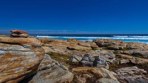 Cape Peninsula van