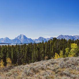 Vue du Grand Teton dans le parc national du Grand Teton sur Maarten Oerlemans