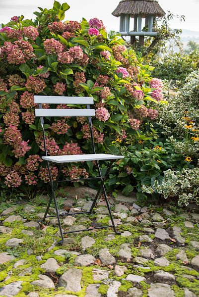 stoeltje buiten bij de hortensia sur ChrisWillemsen