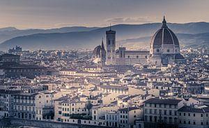 Florence Basiliek van Dennis Donders