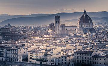 Florence Basiliek van
