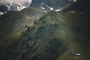 Alpenansicht 3 von Bart Rondeel