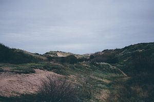 duinen katwijk  van