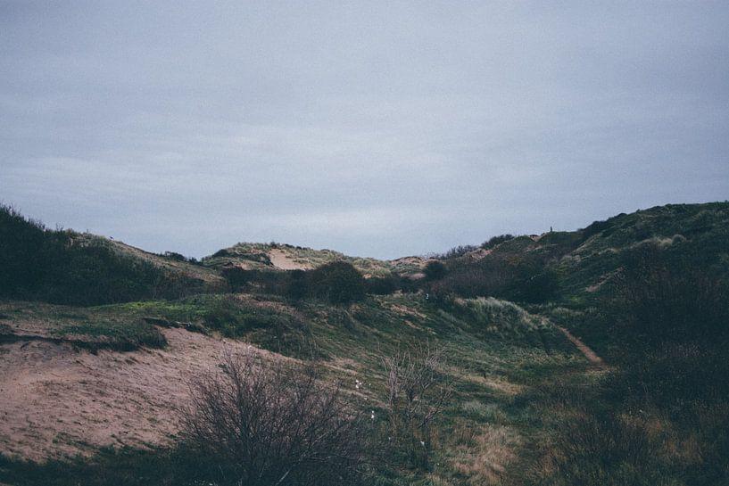 duinen katwijk  van Stephan de Haas