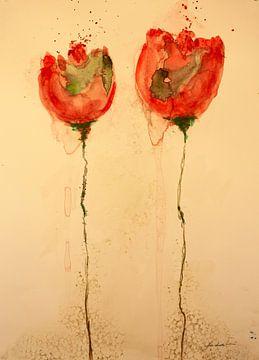 Rote Mohnblume mit roter Knospe von Klaus Heidecker