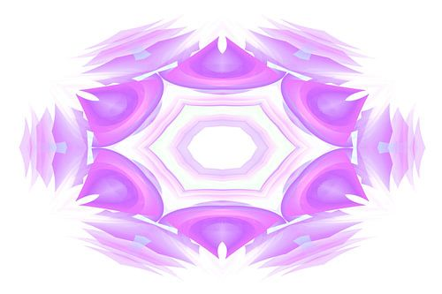 Akra viola floro