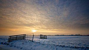 Verlangen naar de Winter