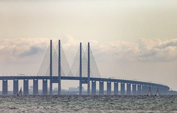 The Bridge Denemarken van Menno Schaefer
