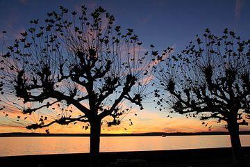 Sonnenuntergang bei Meersburg am Bodensee von Holger Mader
