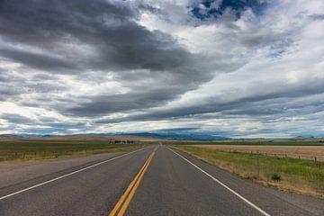 Road to nowhere van Jan Peter Mulder