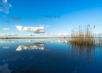 Gespiegelten See von Roelof Nijholt