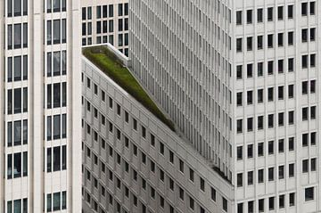 Het groene element, Dan Clausen Hansen van 1x