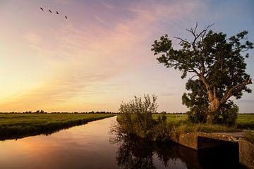 Sonnenuntergang von Jan de Jong
